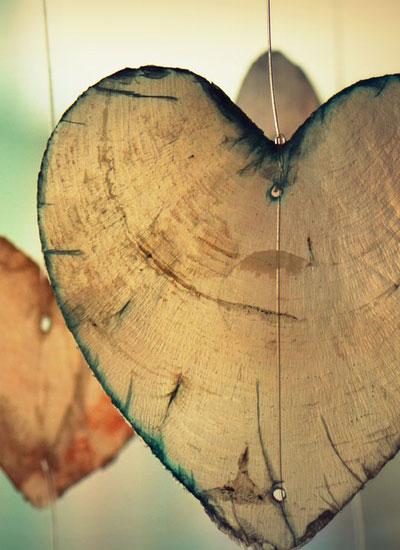 Herz, Lunge, Blutgefäße